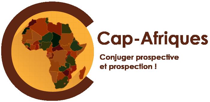 Centre d'analyse et de prospective sur les Afriques (CAP-Afriques)